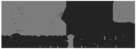 NZHL Logo